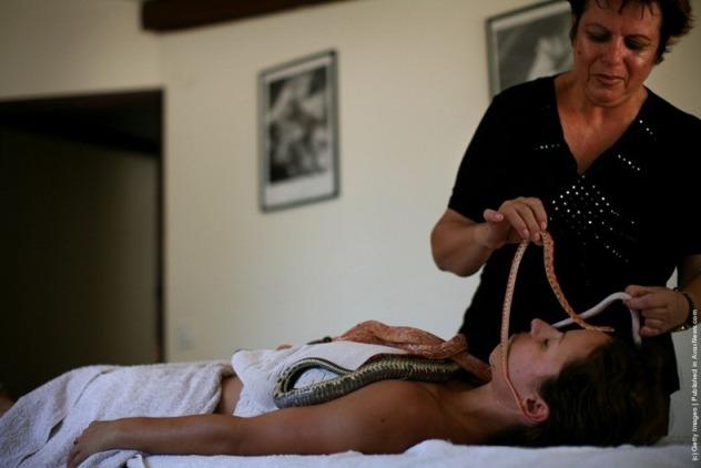 змеиный-массаж.