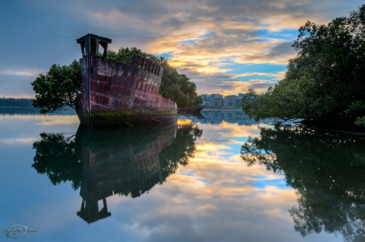 Плавучий лес, Австралия.