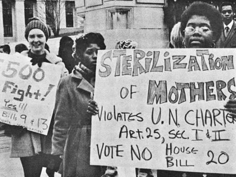 Протесты против стерилизации