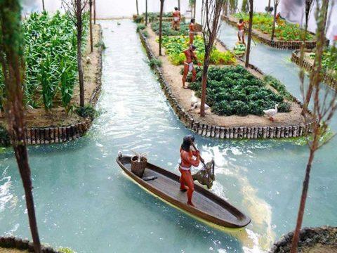 Чинампы -плавучие сады ацтеков